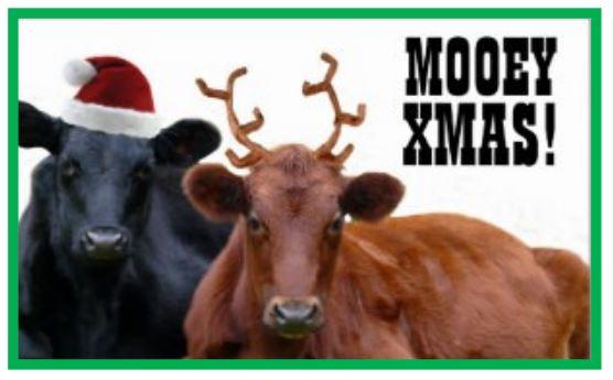 Dulverton Merry Christmas