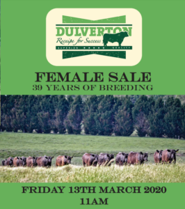 2020 Dulverton Female Sale