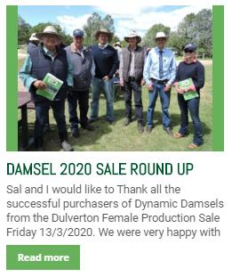 http://dulvertonangus.com.au/damsel-2020-sale-round-up/