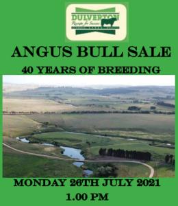 2021 Dulverton Angus Bull Sale