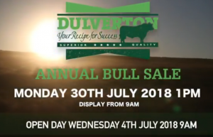 Part 1 – Bull Purchase Guide