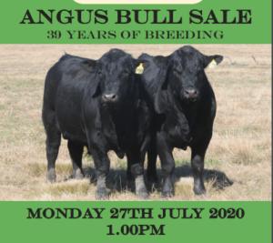 2020 Dulverton Angus Sale